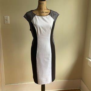 Calvin Klein colorblock dress black white mesh 16